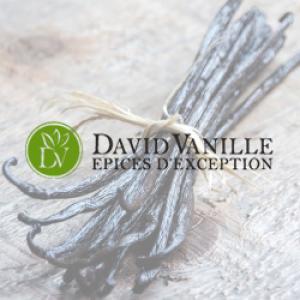 david-vanille