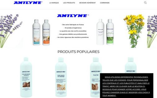 site_anilyne
